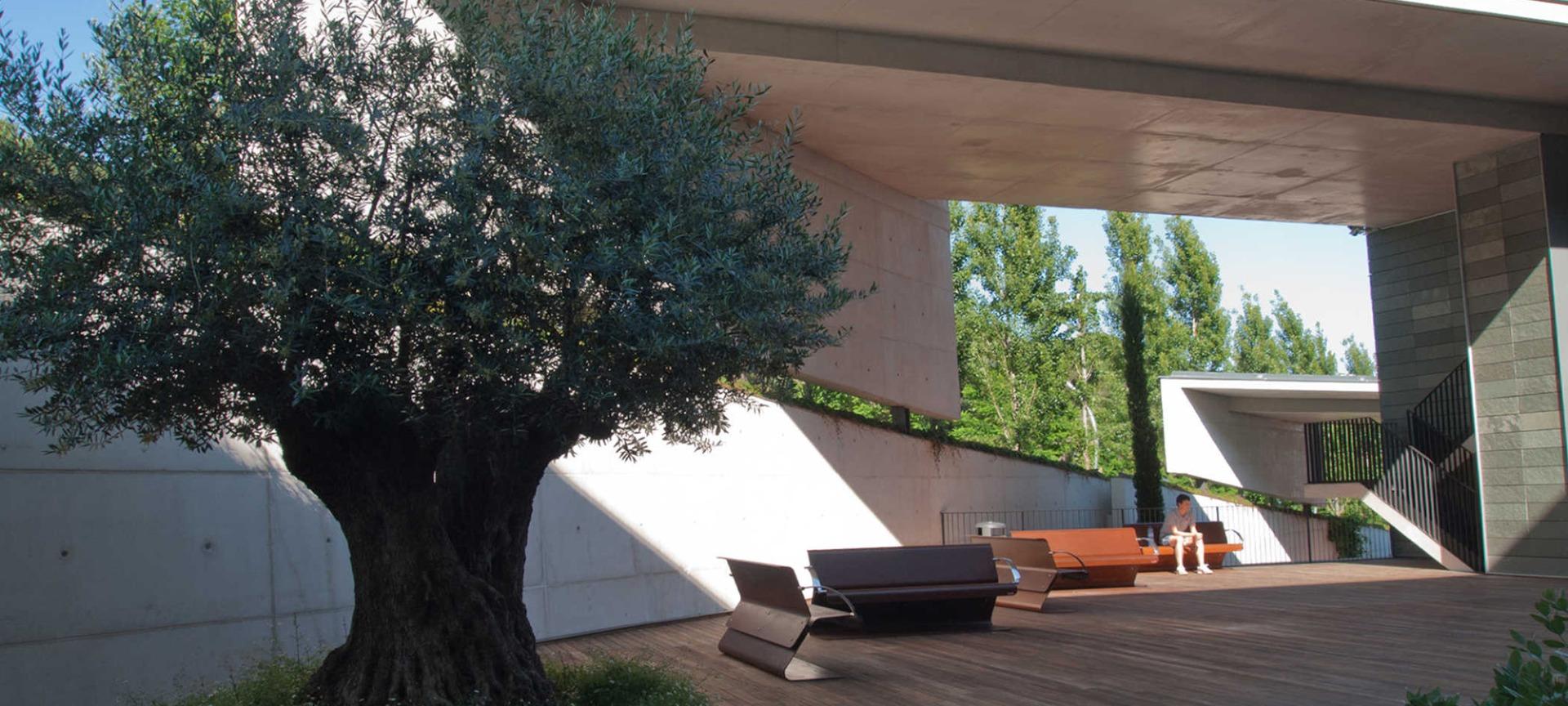 Sarria University Hall Barcelona