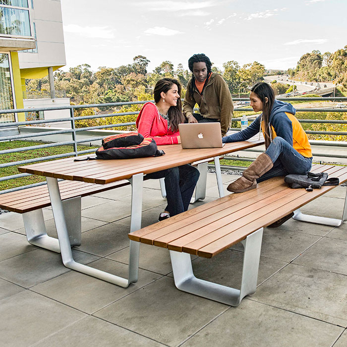 MultipliCITY Picnic Table