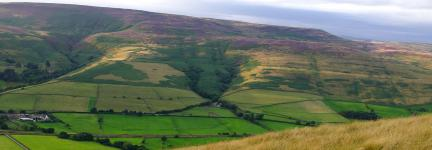 Why are Conservation Areas so Important?
