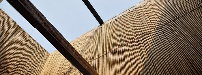 Bamboo: The 'Green Steel' of the 21st Century?