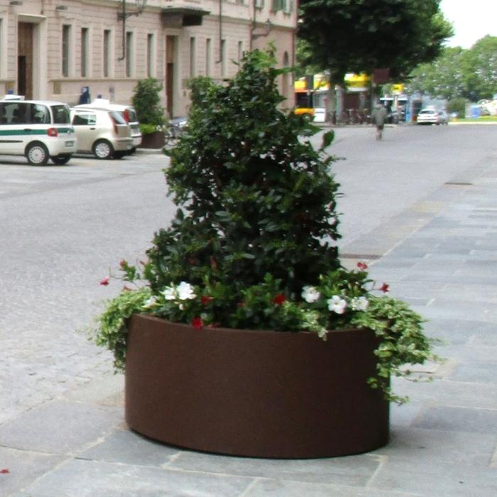 Aster Planter