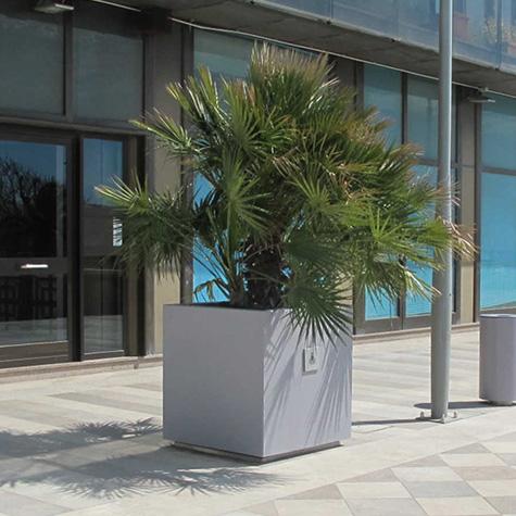 Dahlia Planter